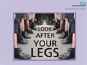 Picture of Look after Your Legs - leg ulcers CD